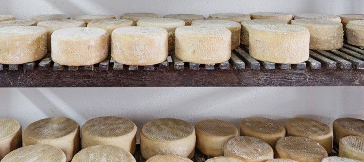 Queso de La Palma, queso palmero, Consejo regulador del queso palmero