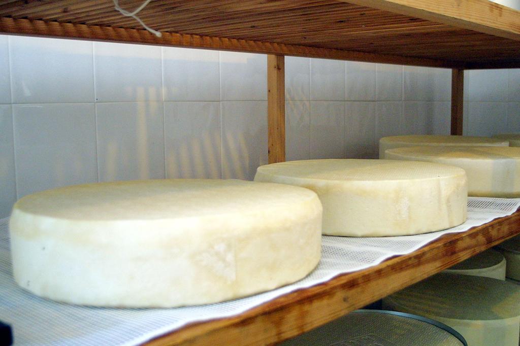 """El """"Queso de Manada"""", el queso de cabra más grande del mundo"""